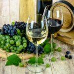 Kvalitní víno v rozumné míře vám prospěje